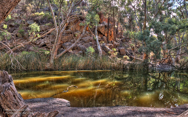 Lagoon in Wilpena Pound